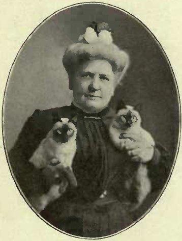 "MRS. CLINTON LOCKE AND HER SIAMESE KITTEN ""CALIF"" AND "" BANGKOK"""