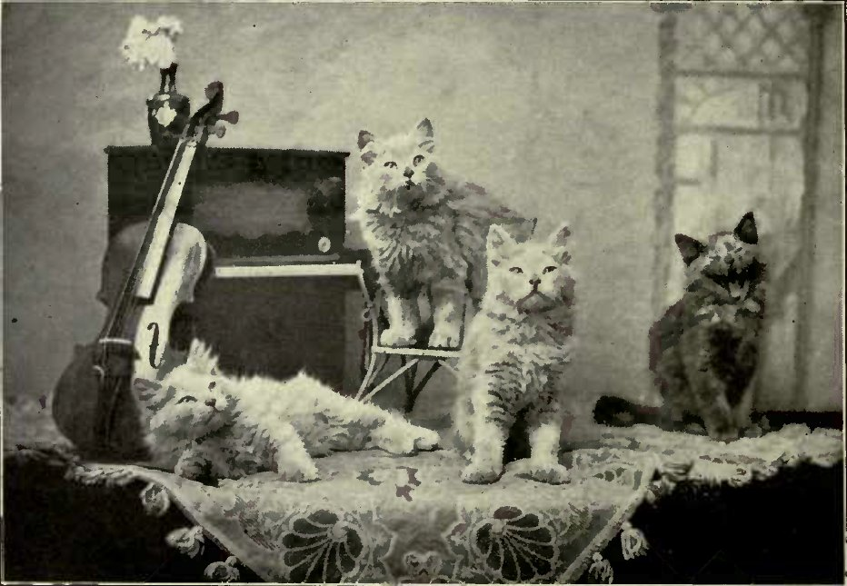 A MUSICAL PARTY. (Photo : E. Landor, Ealing.)