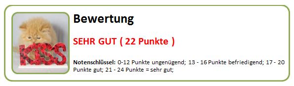 22_Punkte