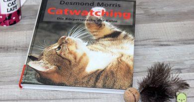Catwatching Taubertalperser