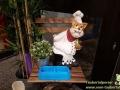 Cats-Cafe-Taubertalperser-13
