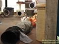 Cats-Cafe-Taubertalperser-16