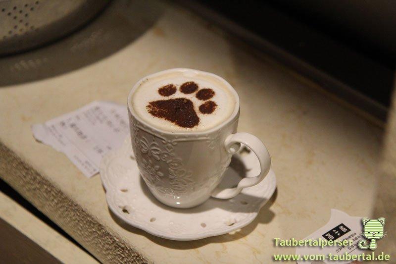 Katzencafe-Beijing-02