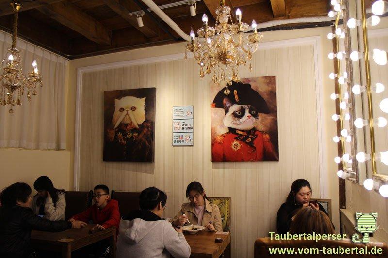 Katzencafe-Beijing-04