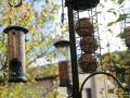 Vogelfutterstation-Tuinplus-Taubertalperser-01