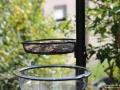 Vogelfutterstation-Tuinplus-Taubertalperser-04