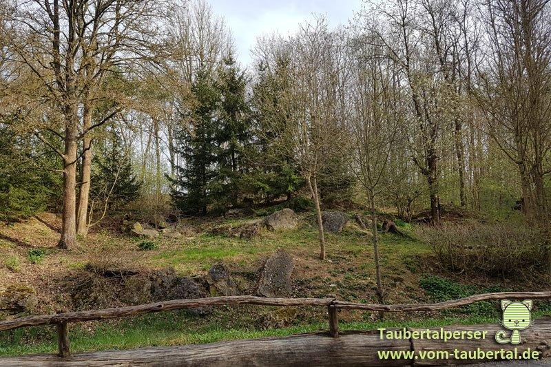 Wildpark-Bad-Mergentheim-Taubertalperser-21