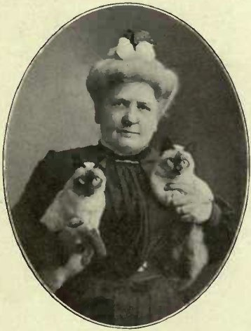 "MRS. CLINTON LOCKE AND HER SIAMESE KITTEN ""CALIF"" AND "" BANGKOK"""