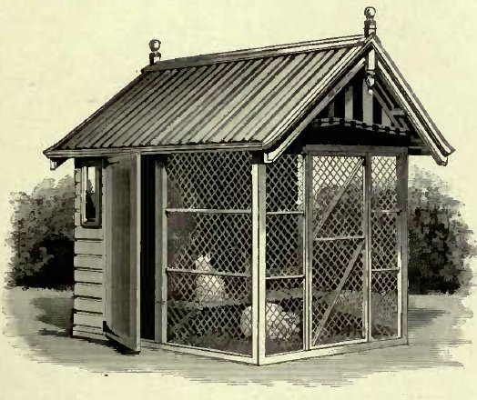 A USEFUL CAT HOUSE