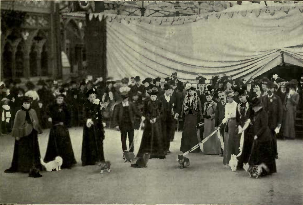 JUDGING IN THE RING AT THE CRYSTAL PALACE. (Photo : Russell & Sons, Crystal Palace.)