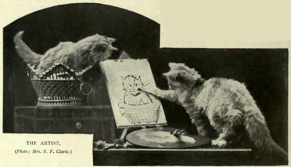 THE ARTIST. (Photo: Mrs. S. F. Clarke.)