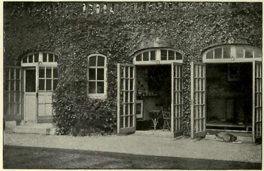 MISS G. JAY'S CATTERY. (Photo: W. Field, Putney.)