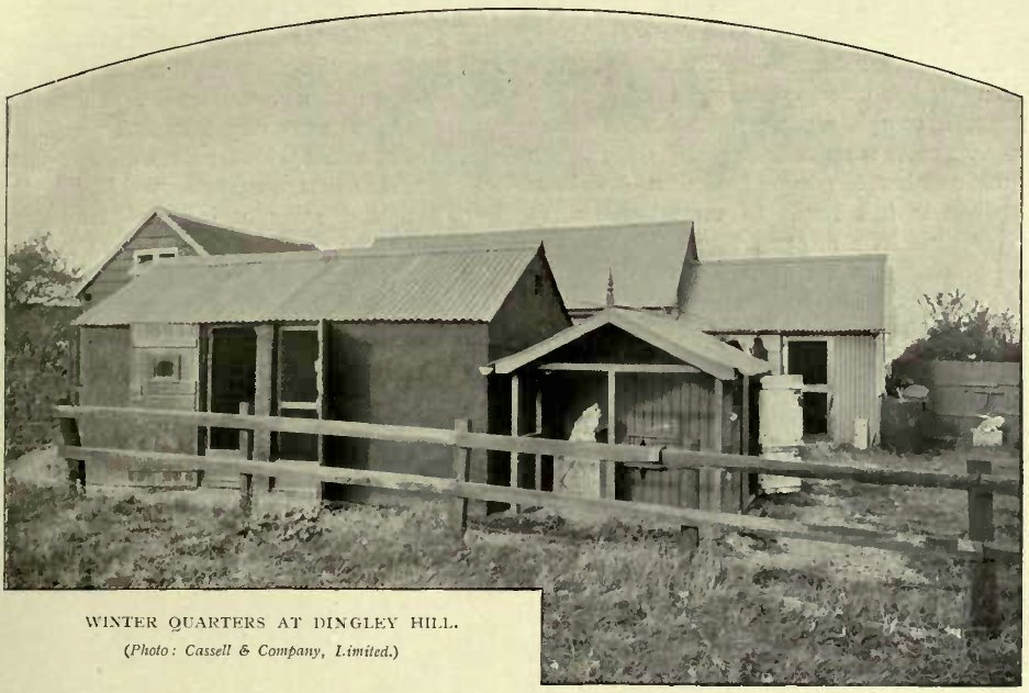 WINTER QUARTERS AT DINGLEY HILL. (Photo: Cassell & Company, Limited.)