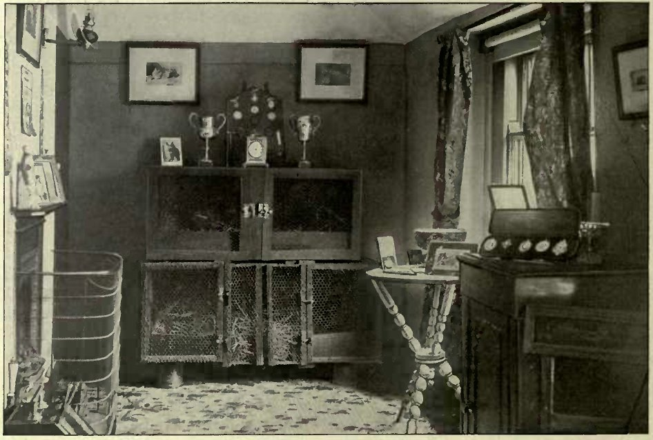 A ROOM IN BRAYFOKT CATTERY. (Photo : W. Lawrence, Dublin.)