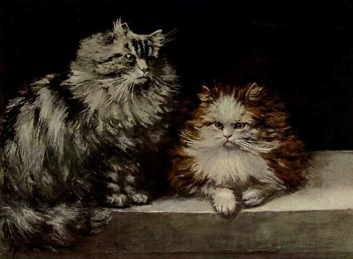 SILVER TABBY AND ORANGE-AND-WHTE PERSIANS (From a Painting by Miss F. Marks.)