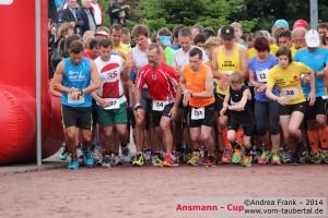 Ansmann_056
