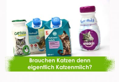 Katzenmilch, Taubertalperser