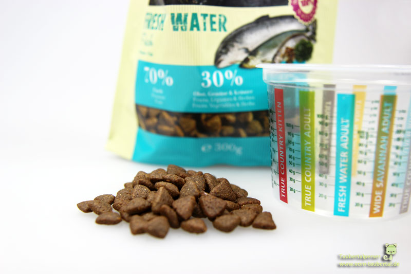 Katzeernährung, Trockenfutter, Katzenblog, Katzeninformationsseite