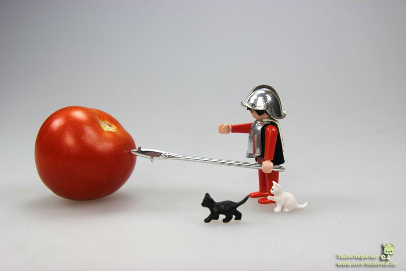 Vegane Ernährung, Vegetarisch, Katzenernährung, Taubertalperser, Katzenblog, Katzeninformationsseite