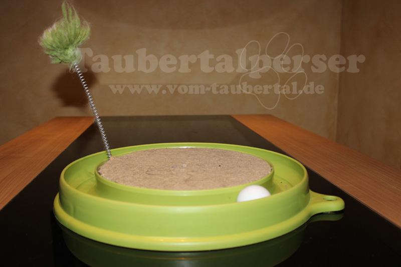 Scratch - Taubertalperser