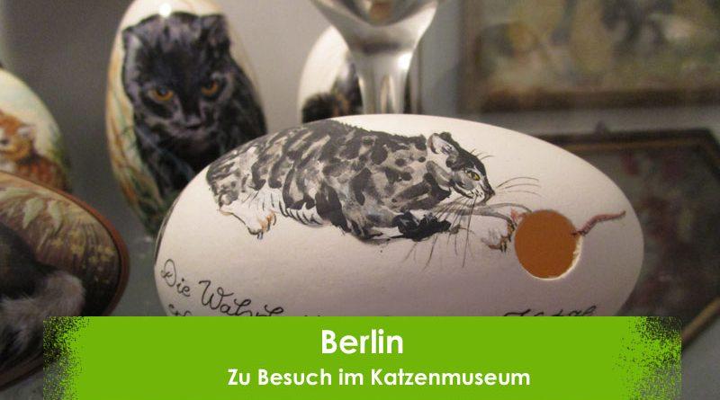Berlin Katzenmuseum