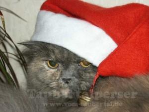 BB_Weihnachten