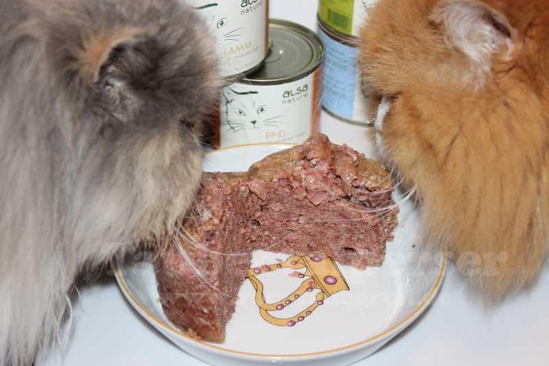 Alsa nature, Katzenfuttertest, Taubertalperser, Futtertest