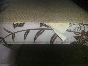 cat-on-taubertalperser-02