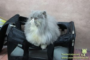 Sherpa® Original Deluxe Pet Carrier, Taubertalperser, Schulze Heimtierbedarf, Zooplus, Produktvorstellung, Produkttest