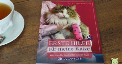 Erste Hilfe für Katzen, Taubertalperser, Katzen, Unfall, Hilfe