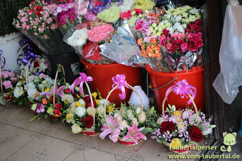 Shanghai, Taubertalperser, Märkte, Blumenmarkt