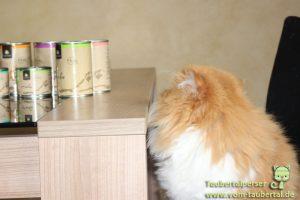 Canelis Katzennassfutter, Taubertalperser, Futtertest, Katzenfuttertest, Katzenfutter im Test