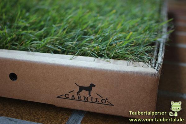 Carnilo Katzenrasen Taubertalperser