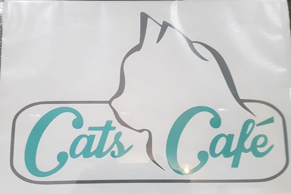 Cats Cafe, Karlsruhe, Katzencafe, Taubertalperser