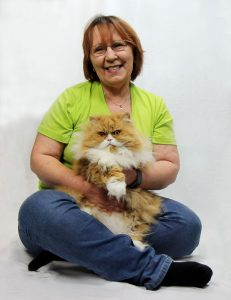 Andrea, About me, über mich, Taubertalperser, Katzenblog