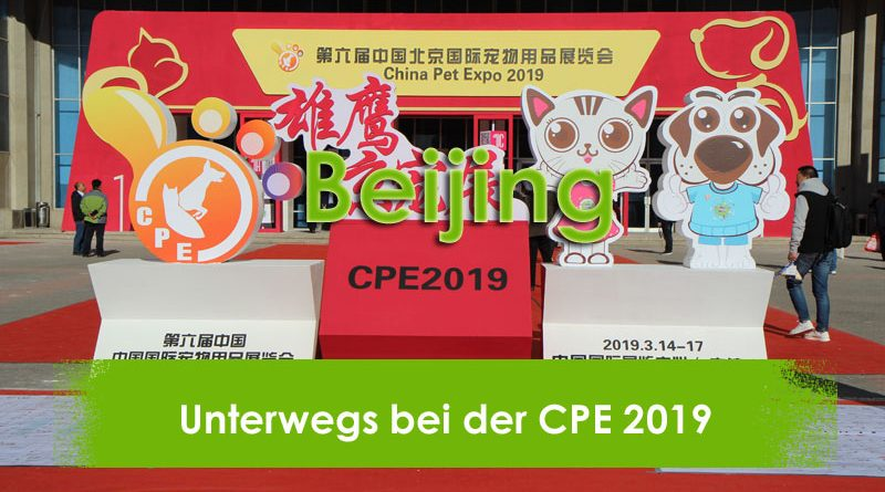 Beijing, Taubertalperser, Reisen, China, Travel, CPE, China Pet Expo, Mjamjam