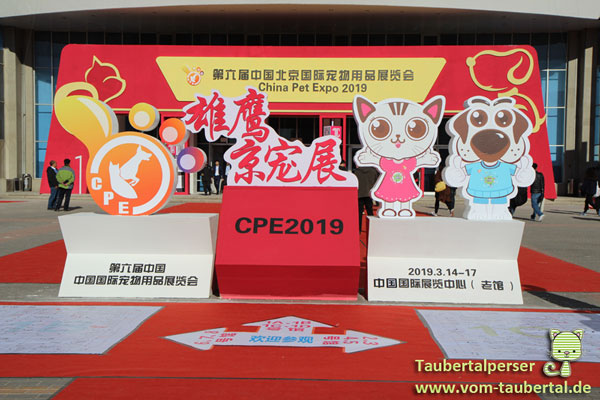 Beijing, Taubertalperser, China Pet Expo, China, Reisen, Messe, Katzen, Hunde