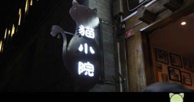 Beijing, Taubertalperser, Reisen, China, Travel, Katzencafe, Katzen, faszinierend
