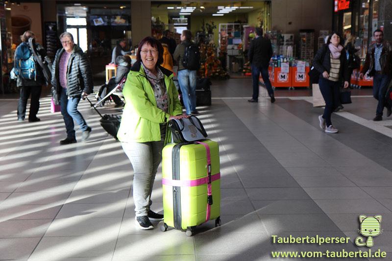 Taubertalperser, Katzenblog, Abreise, Reise, Travel, Hauptstadtkoffer