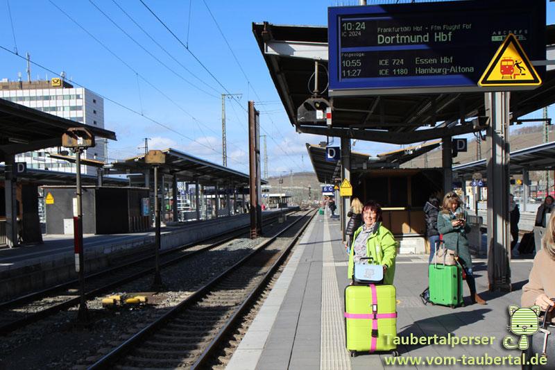 Taubertalperser, Katzenblog, Abreise, Reise, Travel, Delieta, Hauptstadtkoffer