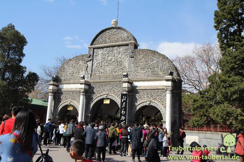 Beijing, Taubertalpersre, China, Travel, Reisen, Zoo