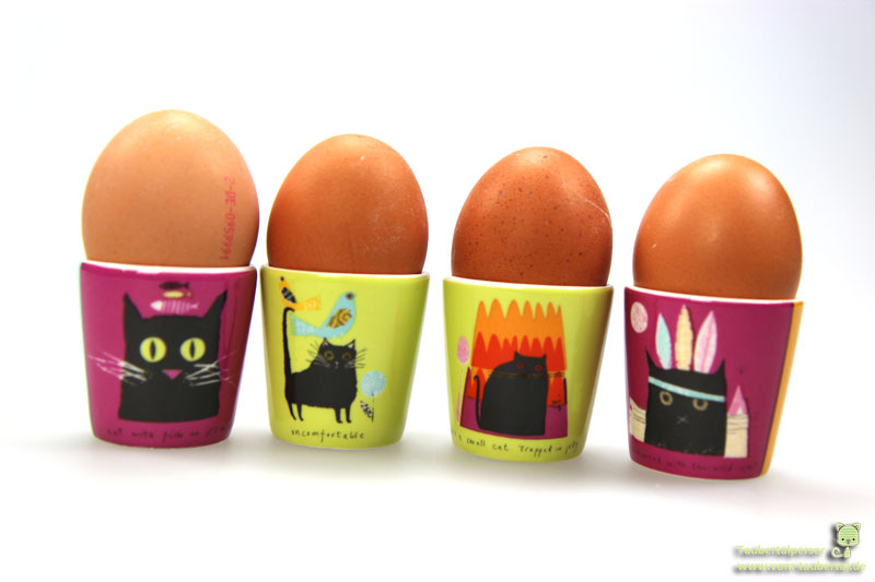 Katzenernährung, Hühnerei, Avidin, Biotin, Taubertalperser, Info, Biotinmangel