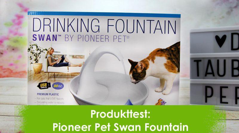 Swan Fountain, Trinkbrunnen, Taubertalperser, Katzenblog, KAtzenliebe, Catpage