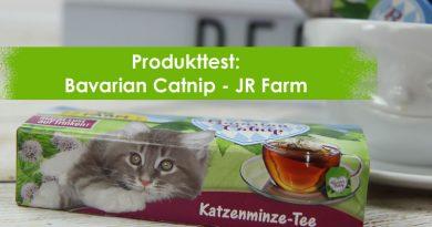 Bavarian Catnip, JR Farm, Katzenminze-Tee, Taubertalperser, Katzenblog, Katzentee, unabhängiger Katzenblog