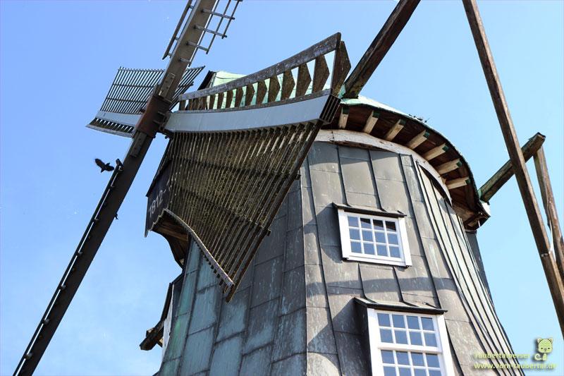 Bewital, Taubertalperser, Leonardo, Katzenblog, on Tour, Züchtertag, Petfood, Hersteller, Oeding, Südlohn, Mehnke Mühle