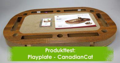Playplate, CanadianCat, Taubertalperser, Produkttest, Katzenblog, Produktvorstellung