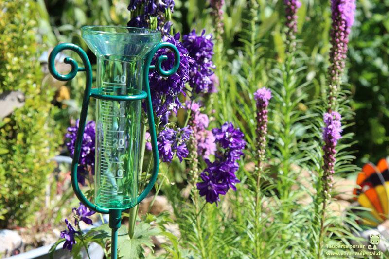 Regenmesser, TFA Dostmann, Taubertal, Taubertalperser, Katzenblog, Pflanzen, Blumen, Schmetterlinge, Insekten, Bienen