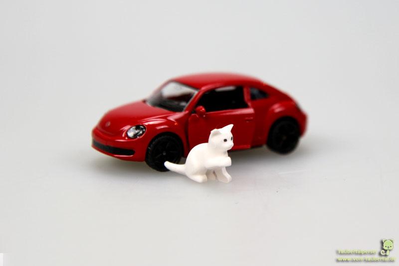 Sicherheit im Auto, Katzen, Katzentransport, Taubertalperser, Katzenblog