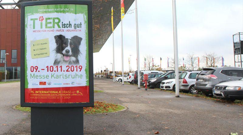 TIERisch gut, Karlsruhe, Taubertalperser, Katzenblog, Informationsseite, Heimtiermesse