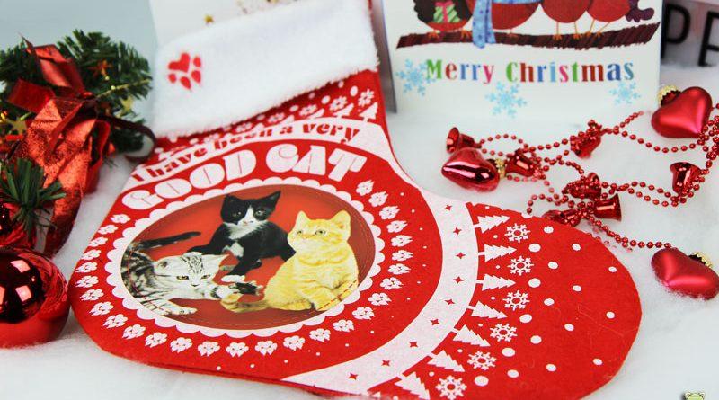 Weihnachten, Taubertalperser, Weihnachtsbrief, Katzenblog, Katzeninformationsseite